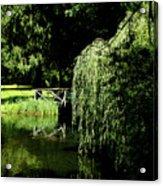 Lake Mirror Acrylic Print