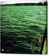 Lake Murray Lure Acrylic Print
