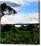 Lake Ndutu Shores Acrylic Print