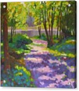 Lake Of The Hills Acrylic Print