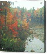 Lake Rohunta Foliage Acrylic Print