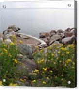 Lake Superior Shore Acrylic Print