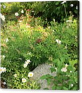 Lake Tahoe Flower Garden Acrylic Print