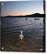 Lake Tahoe Sunset With Rocks And Black Framing Acrylic Print
