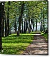 Lake Trail Acrylic Print