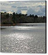 Lake Waccamaw II Acrylic Print