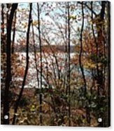 Lake Wallenpaupack Through The Trees Acrylic Print