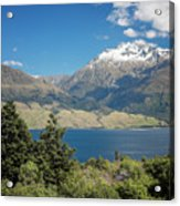 Lake Wanaka New Zealand Iv Acrylic Print
