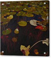 Lake Washington Lilypad 7 Acrylic Print