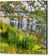 Lakeshore Acrylic Print