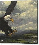 Lakeview Eagle Acrylic Print
