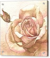 Lalique Rose Acrylic Print