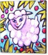 Lambie Acrylic Print