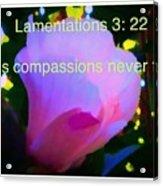 Lamentations His Compassions Never Fail Acrylic Print