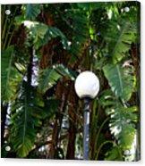 Lamp Light Of Sorrento Acrylic Print