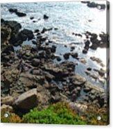 Land And Sea Acrylic Print