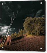Land Of Devastation Acrylic Print