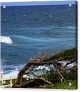 Land Wind And Sea Acrylic Print