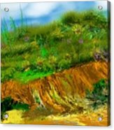 Landscape 012711 Acrylic Print