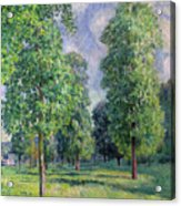 Landscape At Sevres Acrylic Print by Alfred Sisley