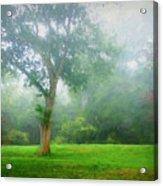 Landscape Beauty Acrylic Print