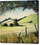 Landscape bn Acrylic Print