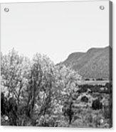 Landscape Galisteo Nm J10o Acrylic Print