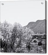Landscape Galisteo Nm J10p Acrylic Print