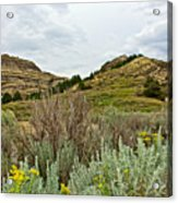 Landscape In Northwest North Dakota  Acrylic Print