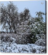Landscape In The Snow Acrylic Print