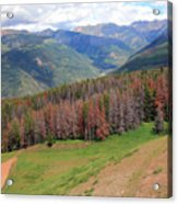 Landscape In Vail Acrylic Print