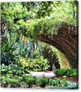 Landscape Rip Van Winkle Gardens Louisiana  Acrylic Print