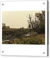 #landscape #stausee #mothernature #tree Acrylic Print