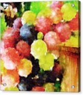 Landscape With Giant Grapes Acrylic Print