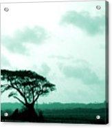 Landscape With Tree Acrylic Print