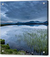 Landscape With Water Grass Acrylic Print