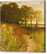 Landscape With Wild Flowers And Rabbits Acrylic Print by Robert Collinson