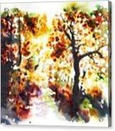 Lane Near Pont Cyfyng Acrylic Print