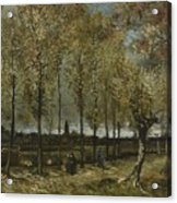 Lane With Poplars Near Nuenen Acrylic Print