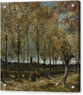 Lane With Poplars Acrylic Print