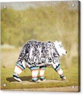 Language Bear Acrylic Print