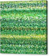 Language Of Grass Acrylic Print