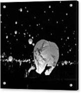 Lantern Liftoff Acrylic Print
