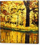 Lanterns Of Gold Vi Acrylic Print