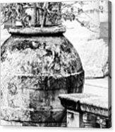 Large Flowerpot - Black And White Acrylic Print