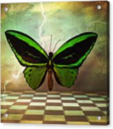 Large Green Wings Acrylic Print
