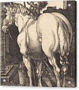 Large Horse Acrylic Print