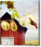 Large Red Barn With Hats On Clothesline In Field Of Wheat Acrylic Print