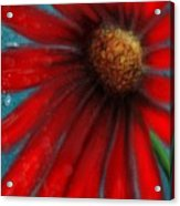 Large Red Flower Acrylic Print