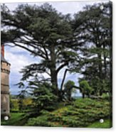 Large Trees At Chateau De Chaumont Acrylic Print